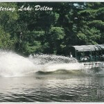 Duck Entering Lake Delton