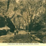 Maple Grove, Cold Water Canyon - The Dells, Kilbourn