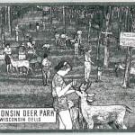 Wisconsin Deer Park - Wisconsin Dells - Etching